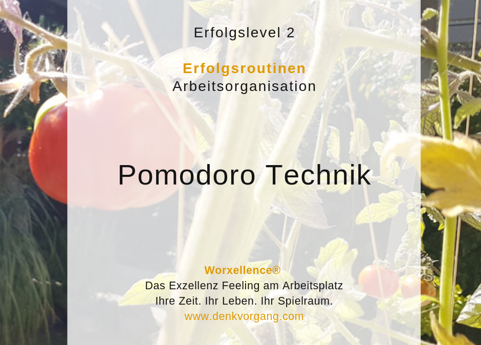 Arbeitsorganisation mit Sprint – Pomodoro Technik